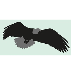 Silhouette eagle vector