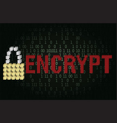 Text encrypt security concept vector