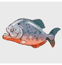 Aggressive fish marine series llustrations vector
