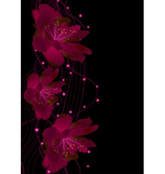 red flowers on black vector image vector image