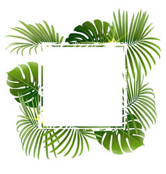 banner with tropical plants and palm branches vector image