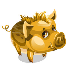 Cute little golden boar animal isolated vector