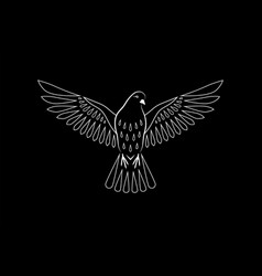 engraving stylized dove on black background vector image