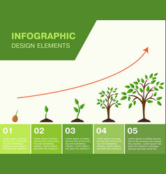 infographic planting tree seeds sprout in vector image