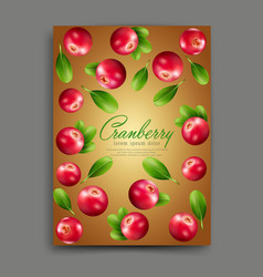 lliustration with realistic cranberries isolated vector image