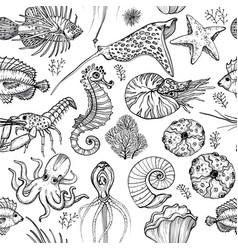 Seamless pattern with hand drawn marine life vector