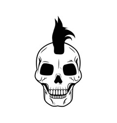skull big image on isolated vector image