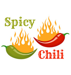 red and green chili peppers vector image vector image