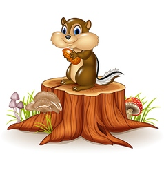 Cartoon chipmunk holding peanut on tree stump vector