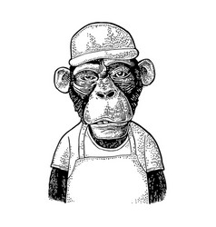 monkeys fast food worker vintage black engraving vector image