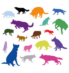 Set of dogs in different colors vector