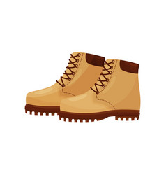 trendy beige boots with laces side view short vector image