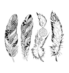 Stylized feathers vector image