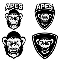 apes set of emblems templates with monkey head vector image vector image