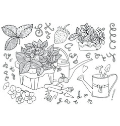 Adorable set with strawberry plants in pots vector