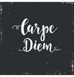 Carpe diem - latin phrase means Capture the moment vector