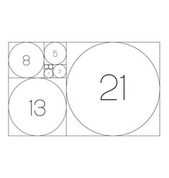 Fibonacci sequence circles golden ratio vector