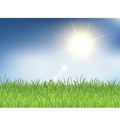 grass and sunny blue sky 2303 vector image vector image
