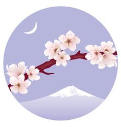 branch of sakura vector image vector image