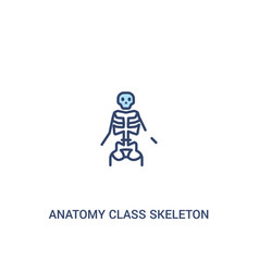Anatomy class skeleton concept 2 colored icon vector