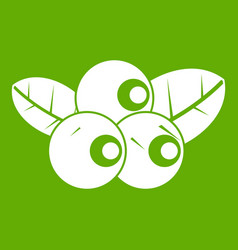 blueberries icon green vector image