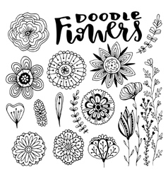 Flowers decorations set Hand drawn vector image