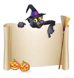 halloween witch cat scroll vector image