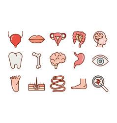 human body anatomy organs health mouth eye foot vector image