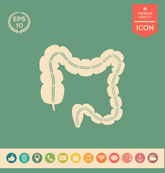 human organ - the large intestine vector image
