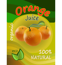 juice of oranges packaging vector image