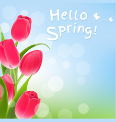 Postcard with tulips vector