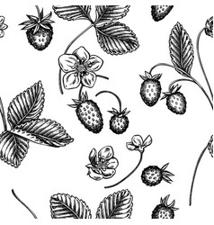 seamless pattern with black and white strawberry vector image