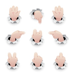 Set of hand gestures vector