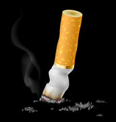 realistic cigarette butt on black background vector image vector image