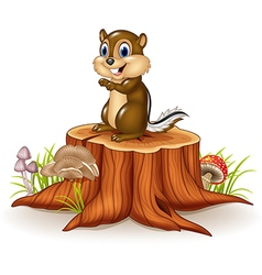 Cartoon chipmunk sitting on tree stump vector image vector image