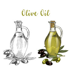 glassware bottle with oil liquid and tree branch vector image vector image