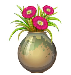 A big pot with flowers vector