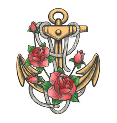 Anchor with rose flowers vector