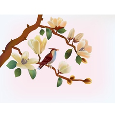 Blooming magnolia in spring a bird vector image vector image