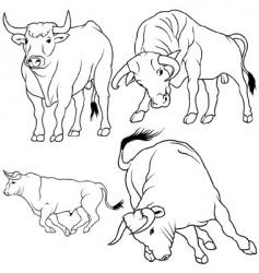 bull set vector image vector image