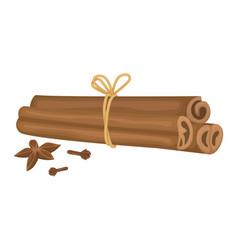 Cinnamon sticks tied with cloves vector