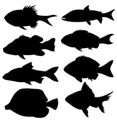 set of different small fish silhouettes vector image