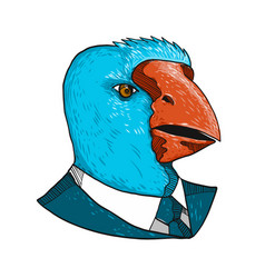 south island takahe in business suit drawing vector image