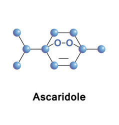 ascaridole is a bicyclic monoterpene vector image vector image