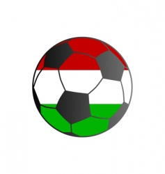 flag of Hungary and soccer ball vector image