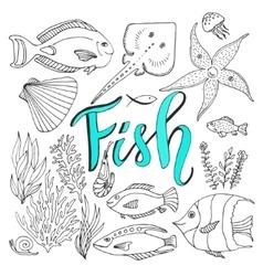sketches fish set Hand drawn marine vector image vector image