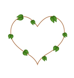 Bauhinia Purpurea Leaves Forming in Heart Shape vector image