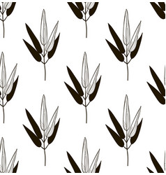 black seamless pattern with drawn bamboo vector image