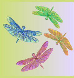 Colorful dragonflies vector