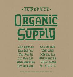Modern handmade font organic supply vector
